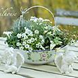 エンジェルと白い花たち
