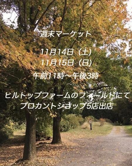 Img_70881